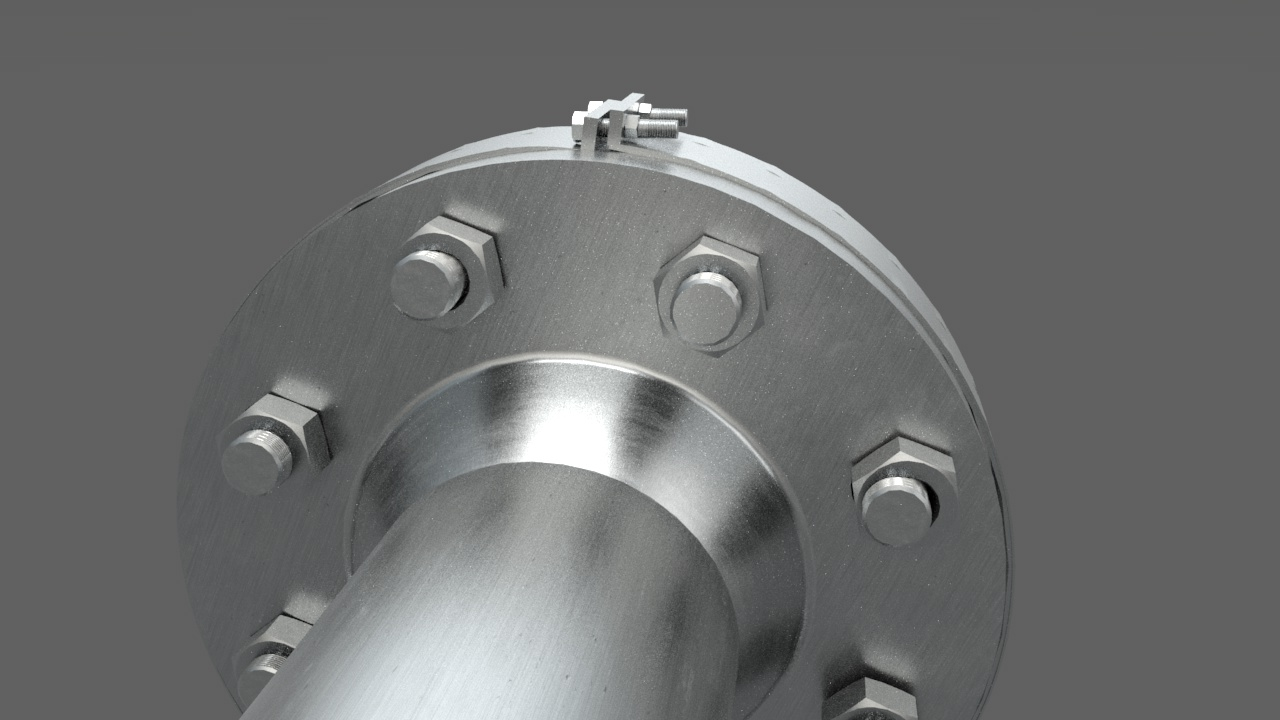 SUS 316L flange guards with PTFE